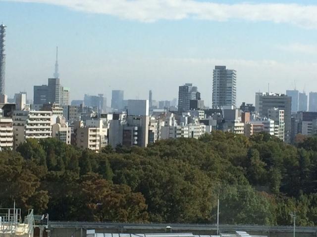 新宿風景.JPG